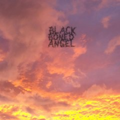 black boned angel cover