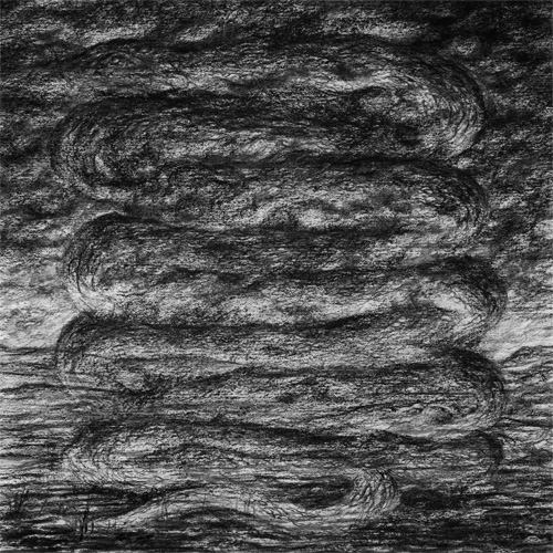 ash borer cover