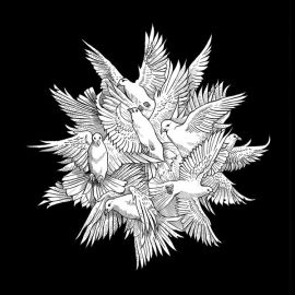 Fyrnask cover