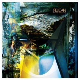 Pelican cover