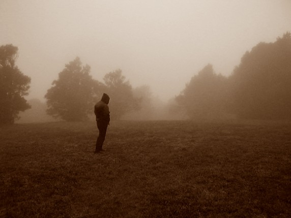 D of Woods of Desolation