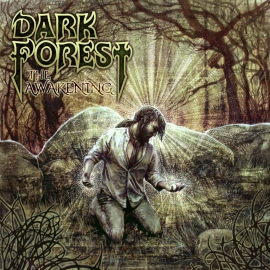 Dark Forest cover