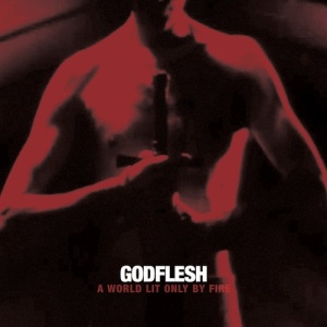 Godflesh cover