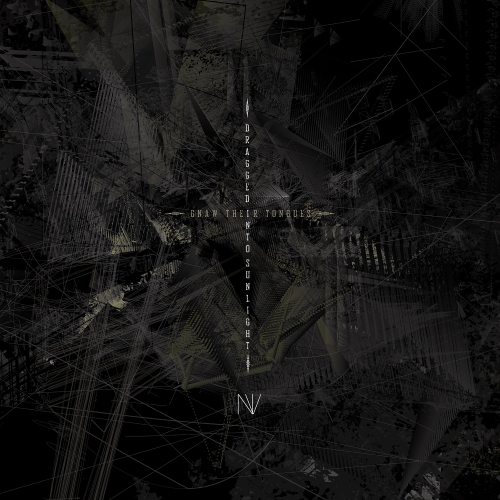 NV cover