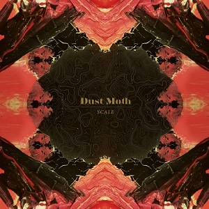 Dust Moth cover
