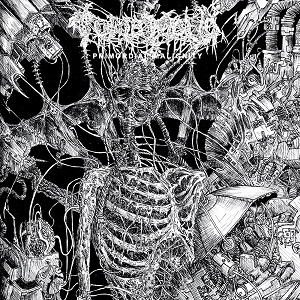 tomb-mold-cover